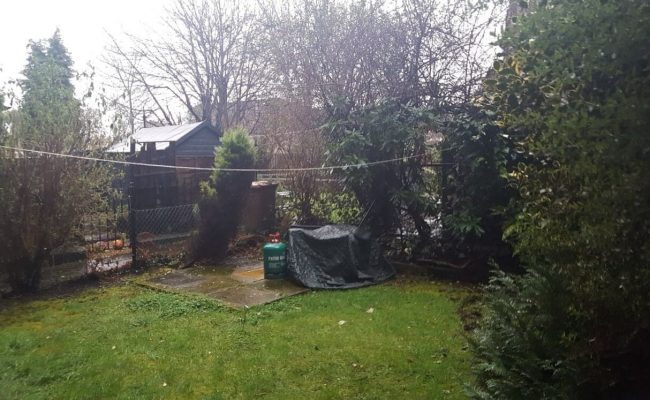 Garden Refurb Before Picture